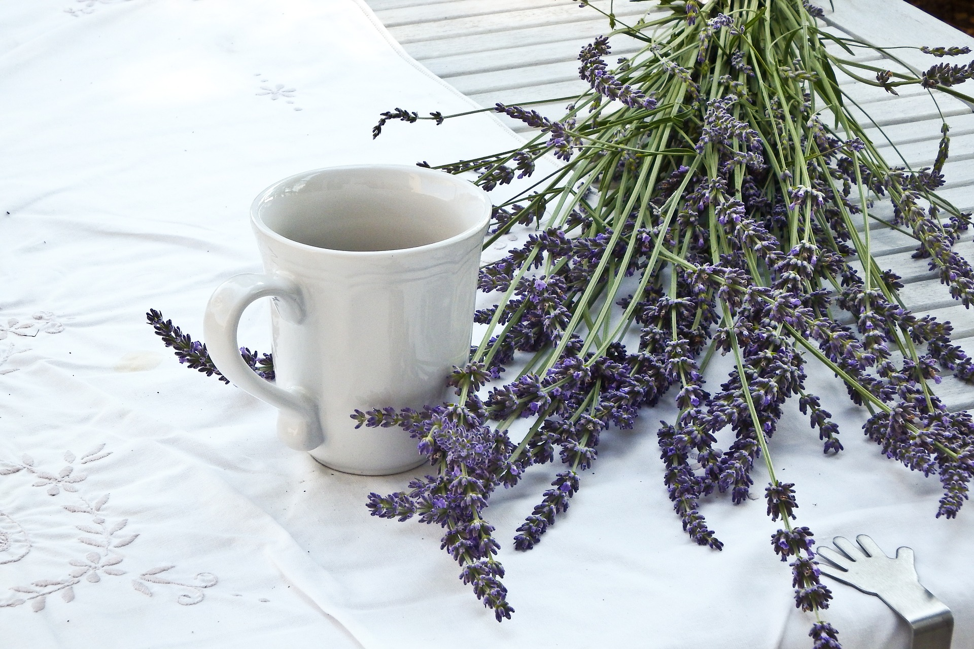Lavender and Some of its Many Uses