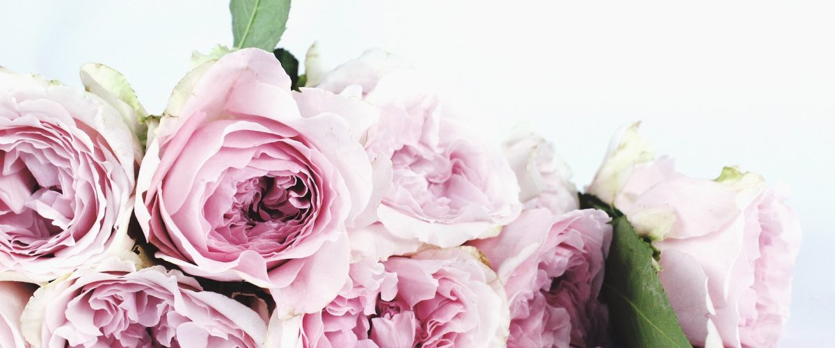 Give me Pink Roses